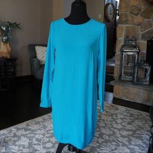 WAYF Blue Long Sleeved Dress